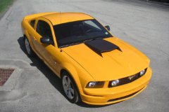 Ford Shelby GT500 Yellow 2008