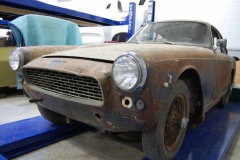 Triumph Italia Black 1960